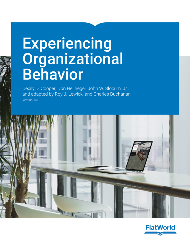 Experiencing Organizational Behavior