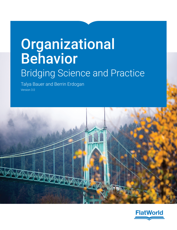 Organizational Behavior: Bridging Science and Practice